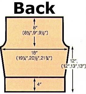 back diagram